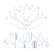 Logo do Logo Pantanal Shopping